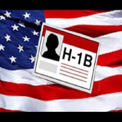 India is not in a hurry in the H-1B visa case