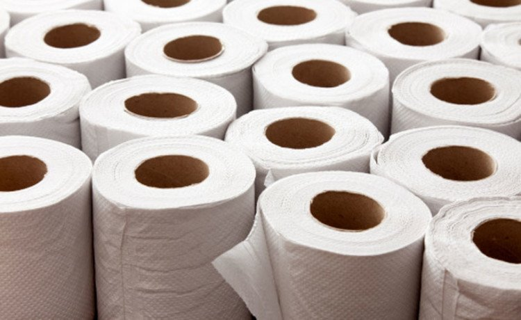 Toilet Paper Theft In China, Government  Installing Cameras In Public Toilets
