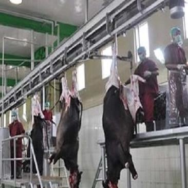 How do I know mechanical slaughterhouse, view photos