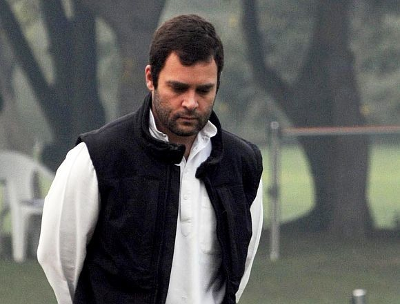 Rahul Gandhi name proposed to Guinness Book for losing 27 elections