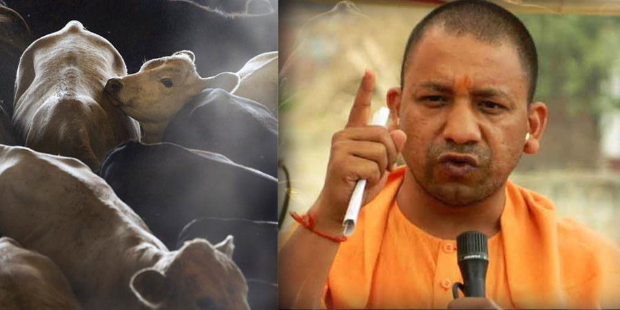 yogi government's new decision in the field of education, private school fees will be controlled