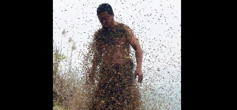 Beekeeper Covered His Entire Body With 460,000 Bees
