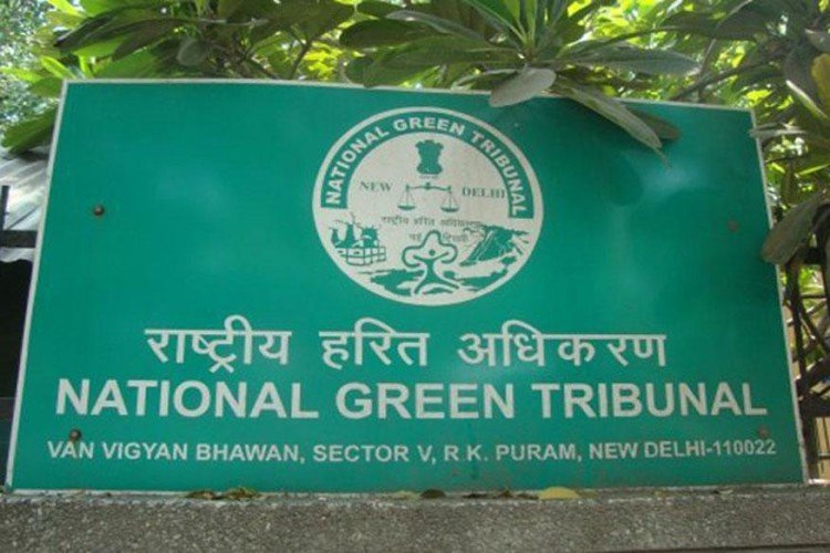 ngt says aol is responsible to damage yamuna floodplains