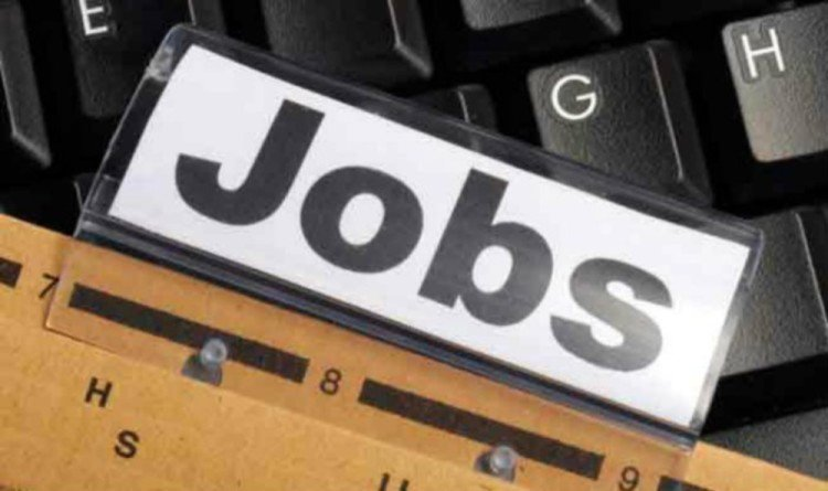 only 13 percent companies will give jobs in next three months, says a survey