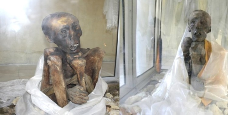 547 Years Old Mummy found in Gew Village of Lahual Spiti in Himachal Pradesh