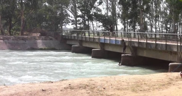 women jumped into canal in Punjab's Ludhiana