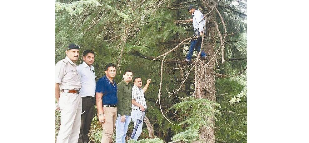 फॉरेस्ट गार्ड केस: पुलिस के बाद अब CID चढ़ी पेड़ पर