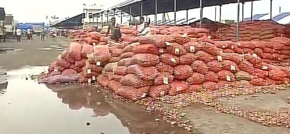 Madhya Pradesh: 8000 metric tonnes of Onions lying in the open for last 17 days