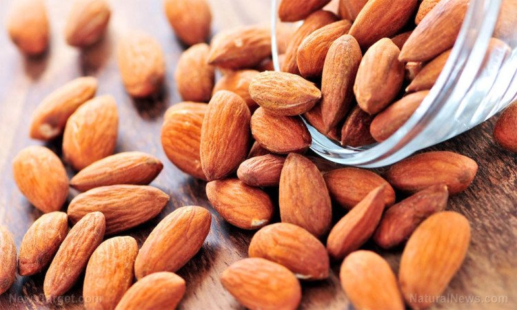 regular one almond consumption is beneficial for health