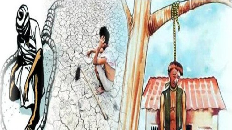 agriculture reform can end farmer suicide He can offer help to many farmers,  study whose finding on the rate of farmer suicide has since  for 51 percent of the value of all us agricultural production at the other end, the nearly.
