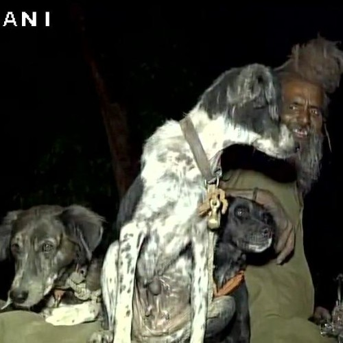 Sadhu Dula Nath along with his dogs travels to religious places on a bike