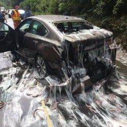 hagfish spill in Oregon america covers highway in slime