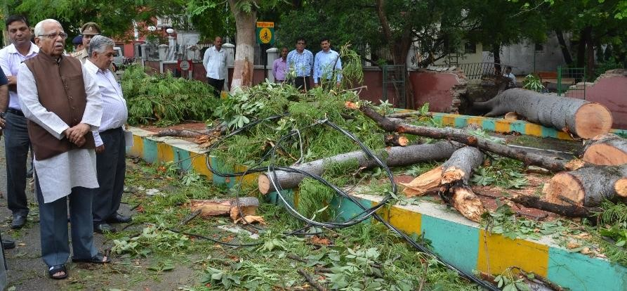 governor ram naik came out to see a tree falls because of rain in Lucknow.