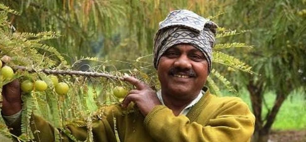 farmer becomes crorepati with a piece of land earing the turnover of 26 lakhs know success story