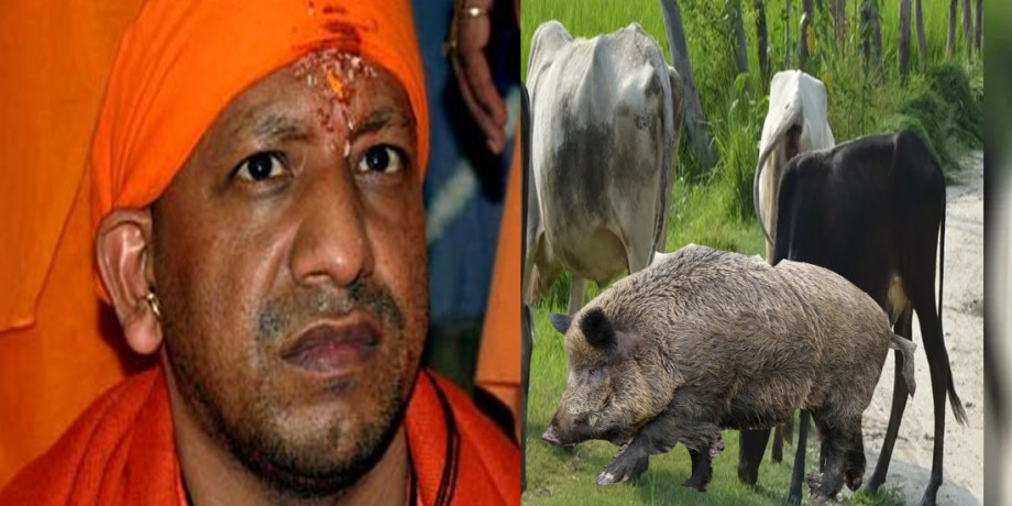 Yogi Governments promise made a deadly one and a half year old child