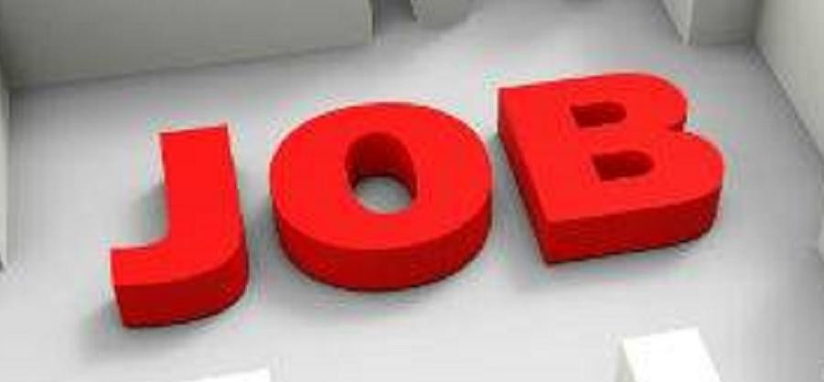 job fair in hamirpur for recruitment on 1500 posts