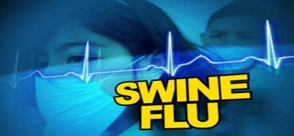 Three more deaths from swine flu