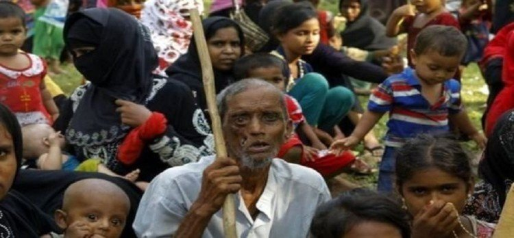 letter to pm modi on rohingyas issue, do not deport them