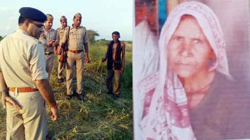 body of old lady was hanged from tree