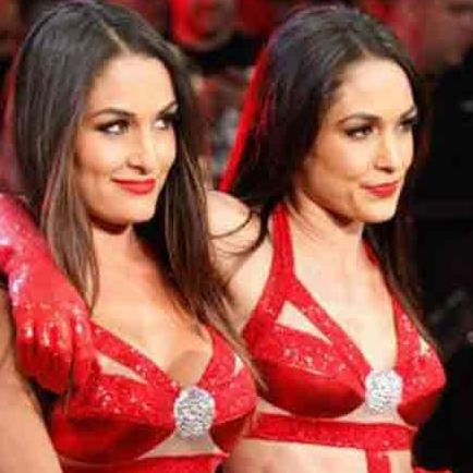 bella twins agrees on comeback in next year