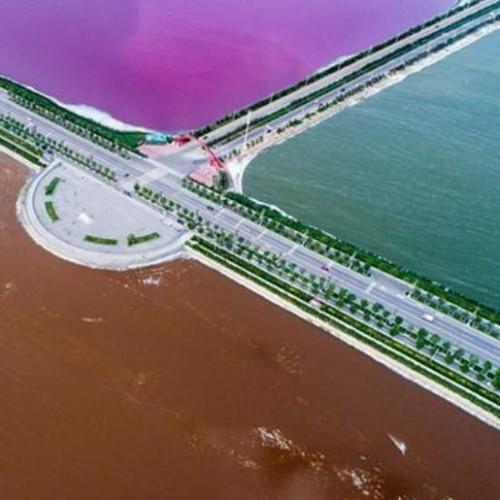 china dead sea turns pink and green, see pictures
