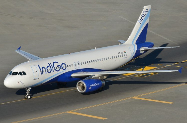 Indigo flight from Raipur to Kolkata made landing in Raipur after aircraft hit a bird