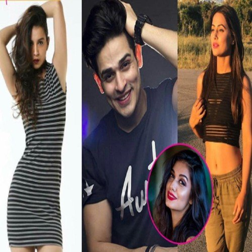 bigg boss 11 priyank sharma's girlfriend speak over vikas gupta falseness
