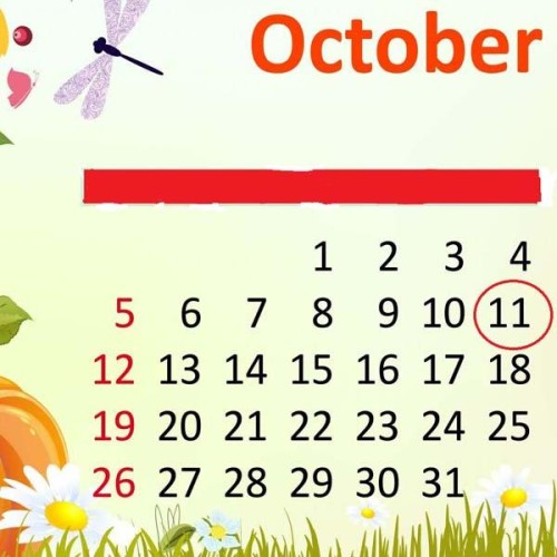 prediction about 11 october birthday according to numerology