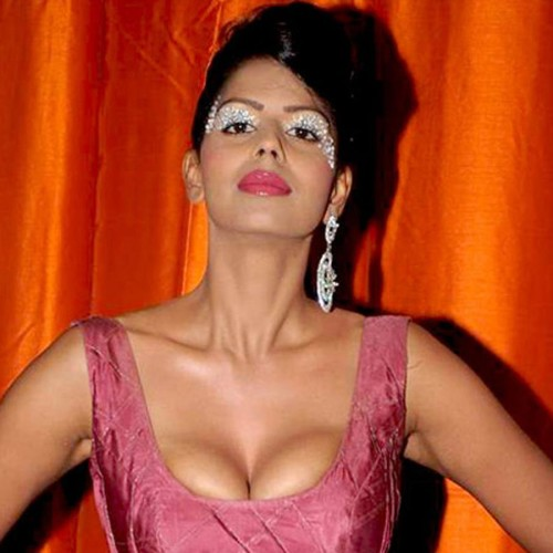 actress bhairavi goswami comment on sexual harrasment in bollywood