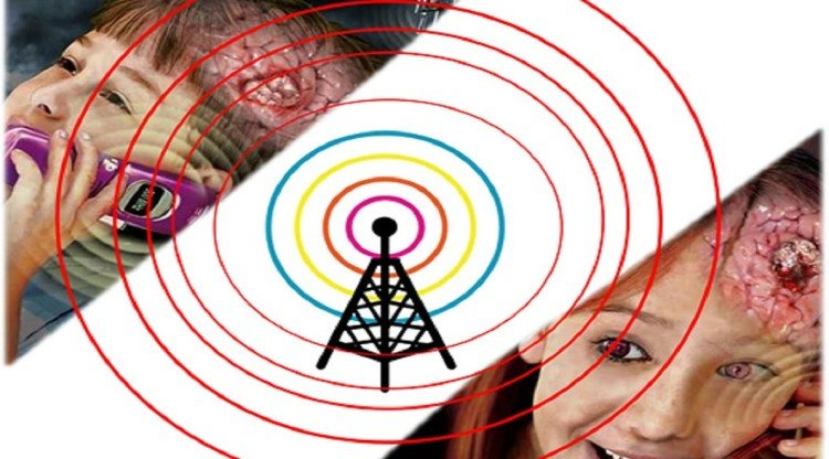 Mobile radiations is harmful for health, Know how to check