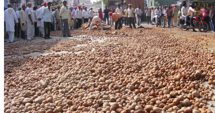 Image result for protest by potato farmers