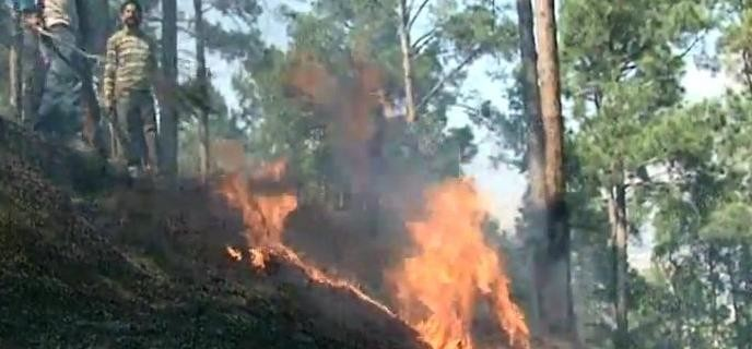 fire broke out in forest of doda in jammu kashmir