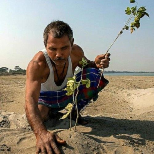 Meet forest man of india jadav molai payeng the man who grew a 1360 acre forest