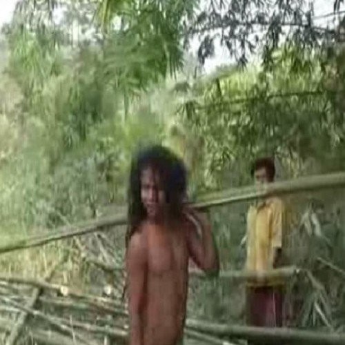 tarzan found in assam know more intersting things about him