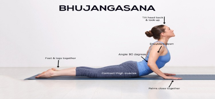 Bhujangasana yoga beneficial in trouble of breathing