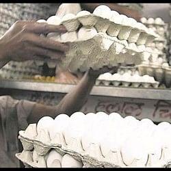 आसमान छू रहे अंडों के दाम, चिकन के बराबर पहुंची कीमतें