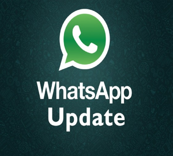 WhatsApp update will let you reply privately in groups