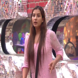 bigg boss 11 shilpa shinde warns akash dadlani for inappropriate behavior