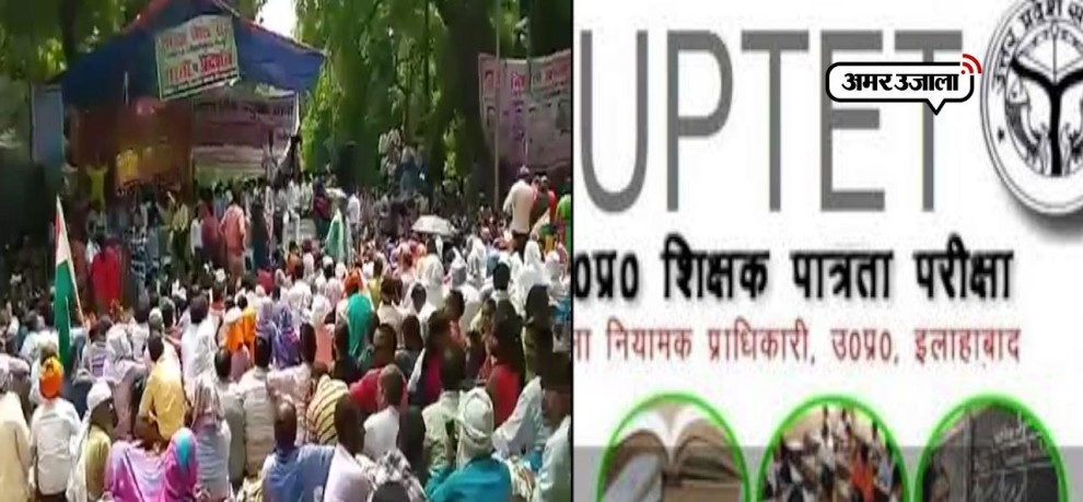 Uptet results out,only 11 percent candidates qualified