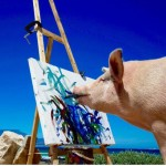 Pigcasso the Pig known for his artworks her painting sell for thousands of dollars