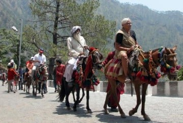 vaisho devi and amarnath pilgrimage animals suffering from glanders disease