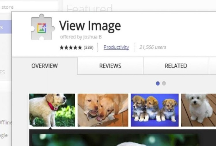 Google View Button extension