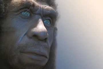 Experts claim Neanderthals were first artists on Earth not human