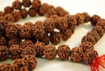 benefits of wearing rudraksha and hidden inside many miraculous powers
