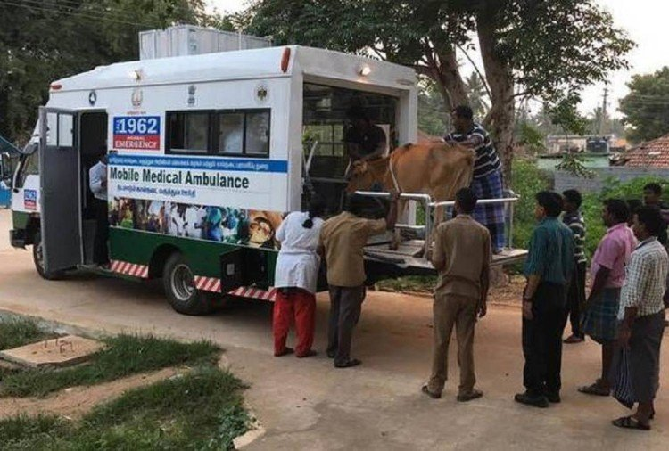 soon veterinary ambulance-cum hospital van ply on city roads