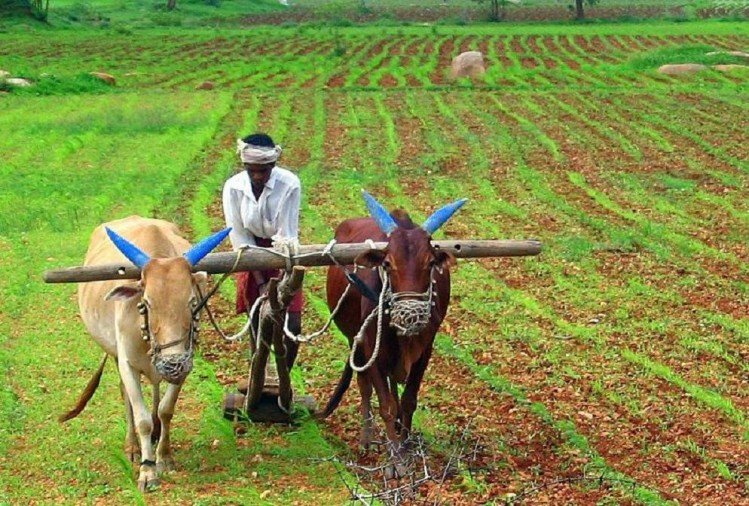 soil health card will boost income of farmers