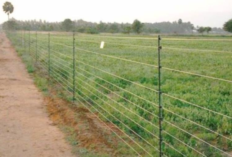 85 percent subsidy on solar fencing