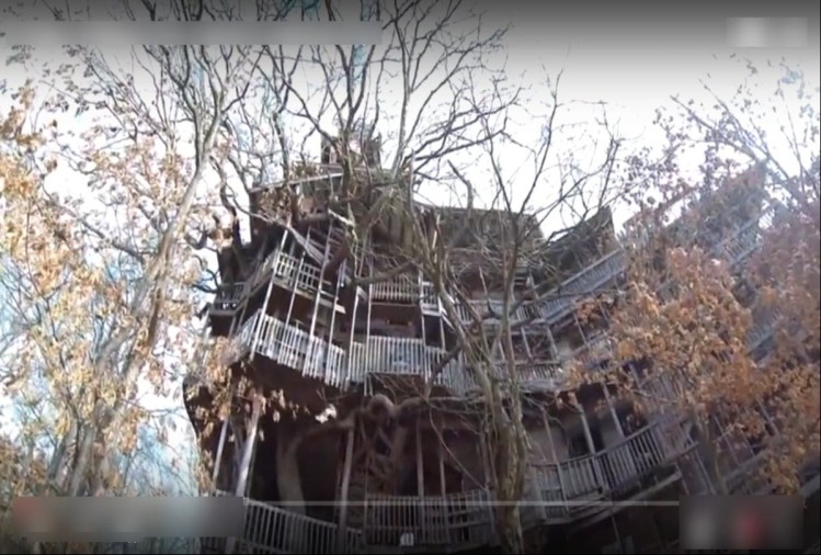 Worlds Tallest Tree House