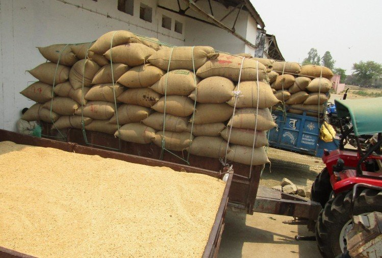 government purchased around three crore tonne of wheat from farmers across country