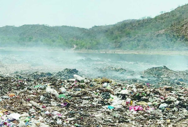 people worried from garbage demands Euthanasia at barotiwala himachal